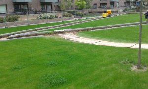 Work underway in Mill Park, CB1 Cambridge